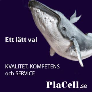 PlaCell Aktiebolag